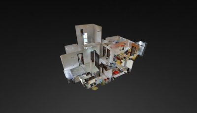 Buganvilla 3D Model